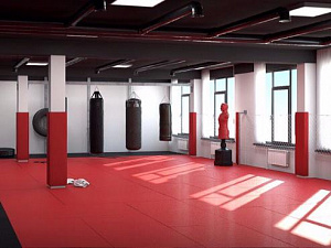 Martial arts Academy MaS, Yekaterinburg City
