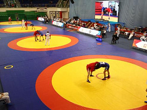 The championship of Russia in Sambo, Yekaterinburg City